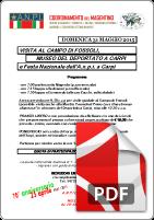 Coordinamento Magentino - 31 Maggio 2015